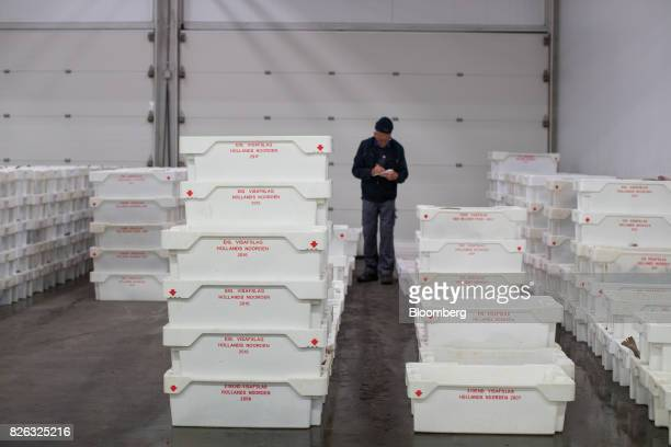 A buyer inspects crates of fish ahead of auction at the port of Den Helder Netherlands on Friday Aug 4 2017 Prime Minister Theresa May will pull...