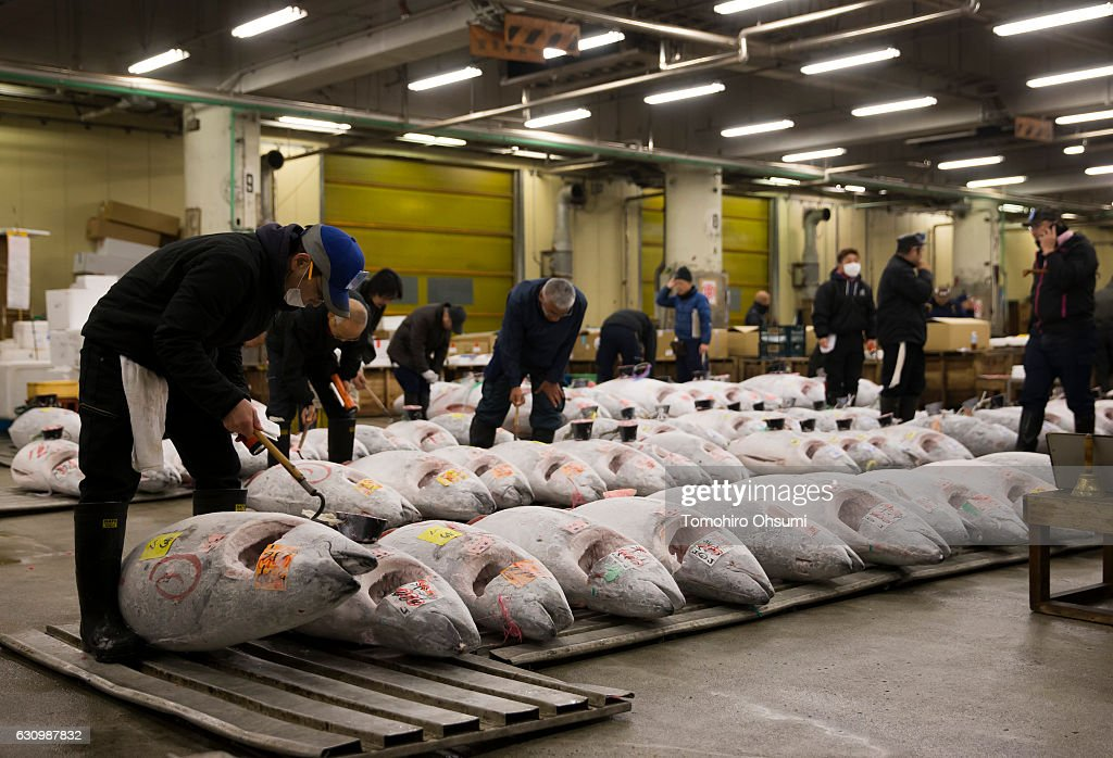 Tsukiji Fish Market Holds First Auction For 2017 : News Photo