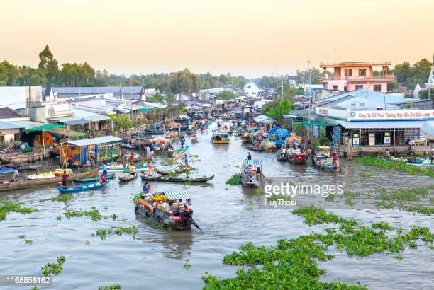 buying and selling agricultural products on river crowded - can tho province stock pictures, royalty-free photos & images