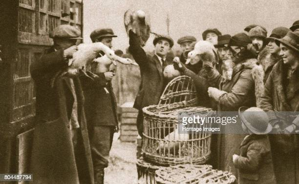 Buying live poultry at a 'Pedlars' Market' at the Caledonian Market London 20th century The market was located between Caledonian Road and York Road...