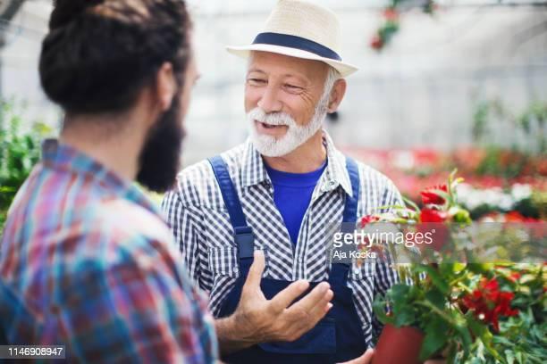 acheter des fleurs en pot au jardin botanique. - expliquer photos et images de collection