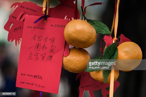 NEWYEAR FOCUS by Aaron TAM This picture taken on February 19 shows wishes tied to plastic oranges hanging from the branches of a special tree in the...