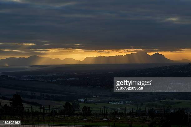 STORY by Andrew Beatty A general view of The vineyard of Vergelegen in Somerset West on September 4 2013 AFP PHOTO / ALEXANDER JOE