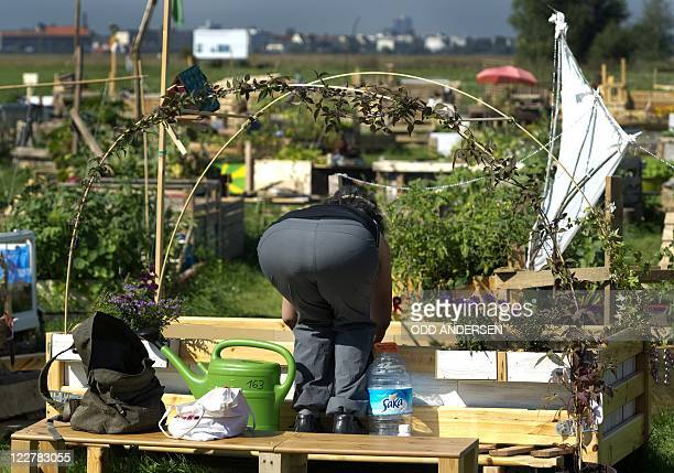 By DEBORAH COLE - A woman tends to her plants at her allotment between the runways at legendary Tempelhof Airport, the site of the Berlin Airlift and...