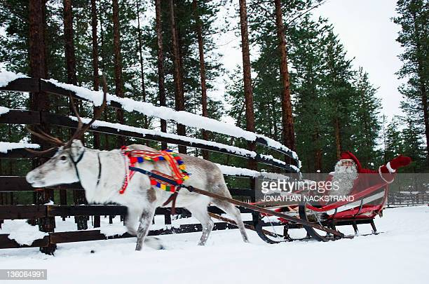 By IGOR GEDILAGHINE - FILES - MORE IN IMAGE FORUM - Santa Claus rides a reindeer and sled outside Rovaniemi, Finnish Lapland on December 15, 2011....