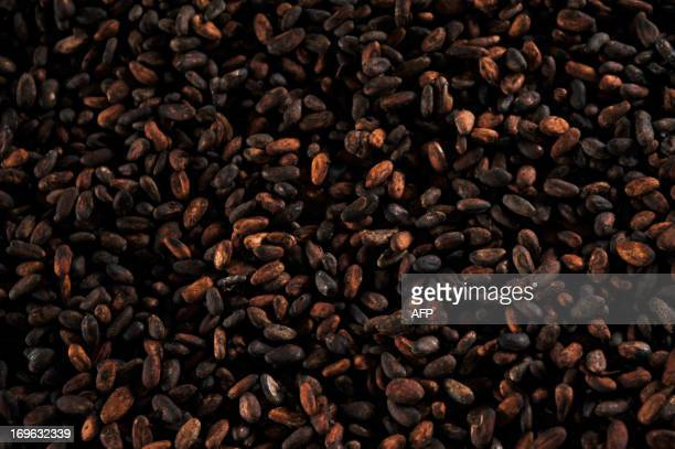 STORY by Marianela Jimenez Picture of cacao beans taken at the Association of Small Producers of Talamanca one of the biggest cooperatives in Costa...