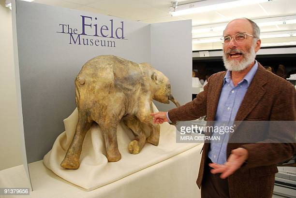 STORY by Mira OBERMAN SciencepaleontologymammothUSmuseum A replica of the world's best preserved wooly mammoth a 40000 year old baby named Lyuba who...