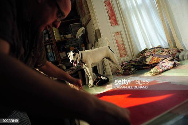 STORY by Sebastian Smith Lifestyleanimalartoffbeat Tillamook Cheddar or Tillie a Jack Russell terrier gets ready to create a painting with claws and...