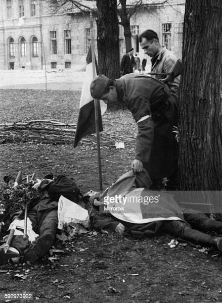 By the end of October 1956 the fighting between the pro soviet communists and hastily organised militas had almost stopped The new government...
