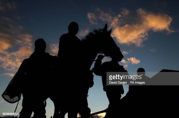 Bygones in Brid ridden by Robert Thornton makes his way in after the E B F Jenny Mark Pitman Gold Syndicates National Hunt Novices Hurdle during day...