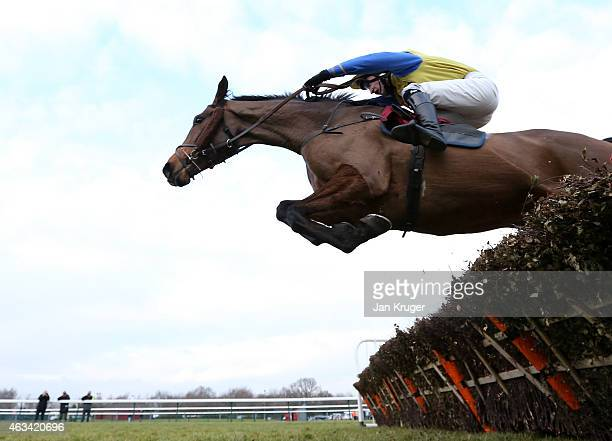 Bygones Sovereign ridden by Michael Heard wins the Pertemps Network Handicap Hurdle Race at Haydock Races on February 14 2015 in Haydock England