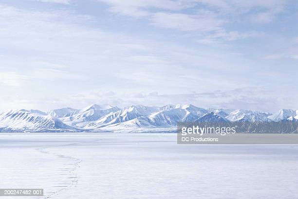 bylot island, nwt, canada - horizon stock pictures, royalty-free photos & images