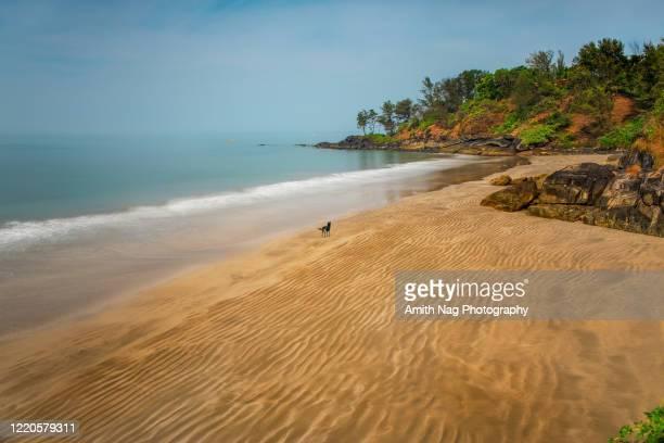 byndoor someshwara beach, near udupi - karnataka stock pictures, royalty-free photos & images