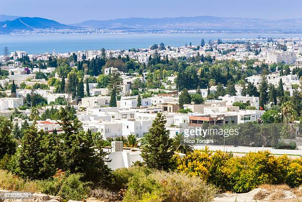 Byrsa Hill looking down on the ancient port at the port of Carthage, Tunis, Tunisia, North Africa, Africa