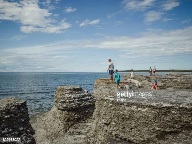 スウェーデンのエーランド島に byrums raukar - エーランド ストックフォトと画像