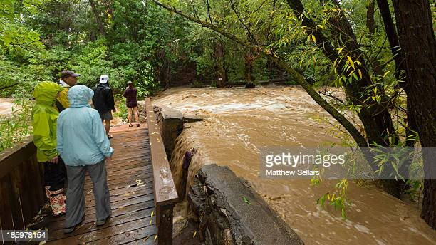 CONTENT] Bystanders make their way out to get a closer look at the flood waters rushing down Boulder Creek