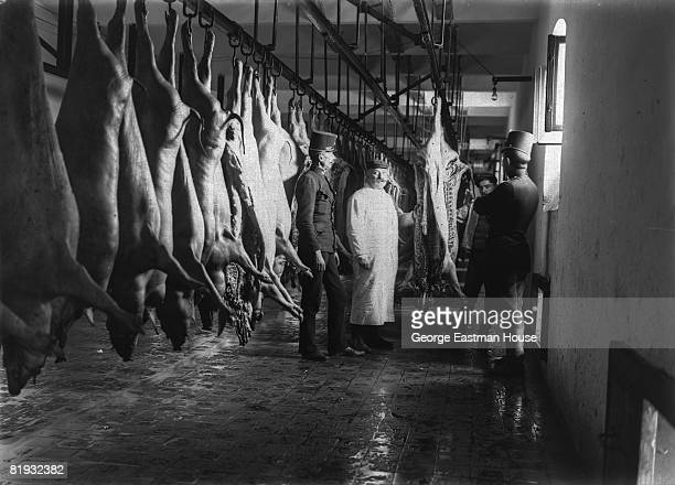 ca Two workers at a slaughterhouse standing next to hanging pig carcasses with two uniformed men 1910s