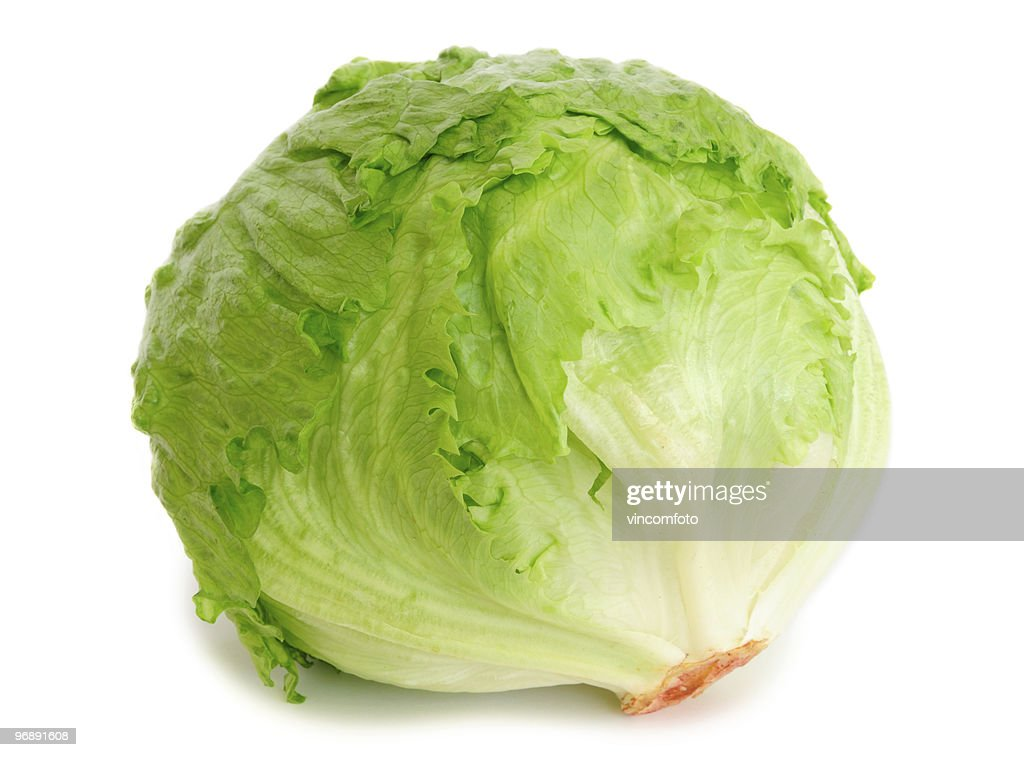 Cabbage lettuce : Stock Photo