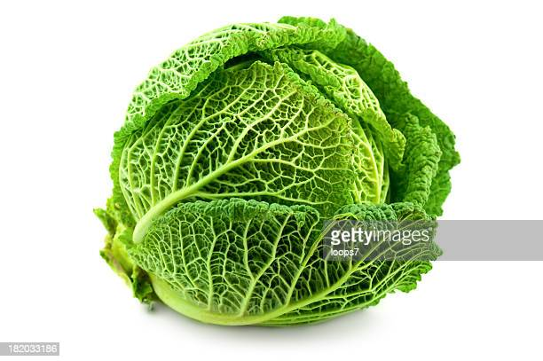 cabbage - cabbage stock pictures, royalty-free photos & images