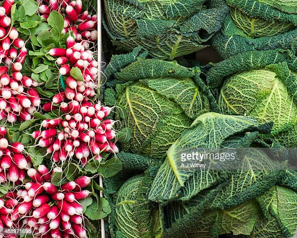 Cabbages and radishes on market stall