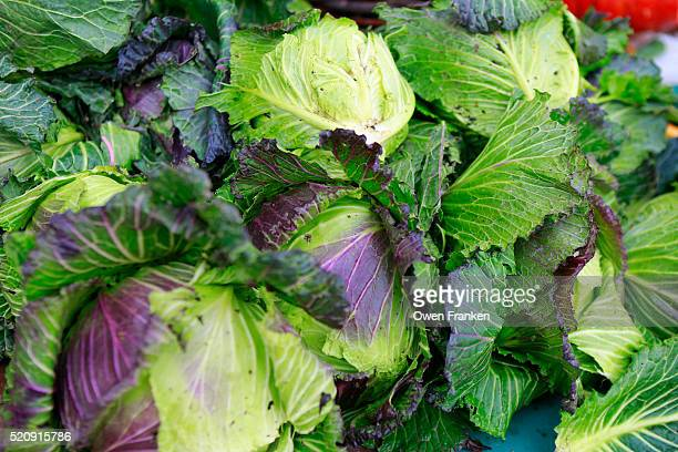 cabbages at the Sunday open air produce market at La Bastille, Paris