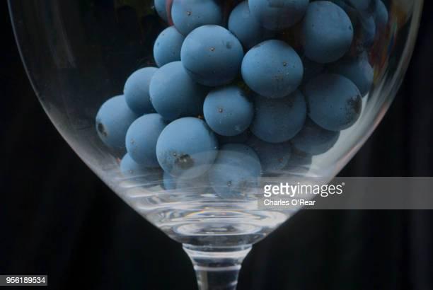 cabernet grapes - cabernet sauvignon grape - fotografias e filmes do acervo