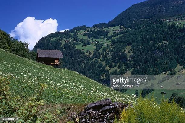 Cabin in Lauterbrunnen