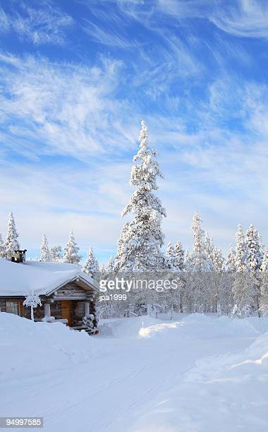 A cabin in the forest covered in snow