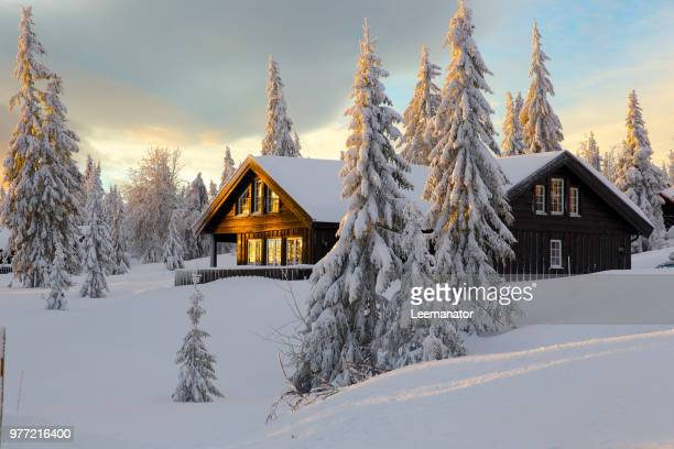 cabin on snowy hill, norway - log cabin stock pictures, royalty-free photos & images