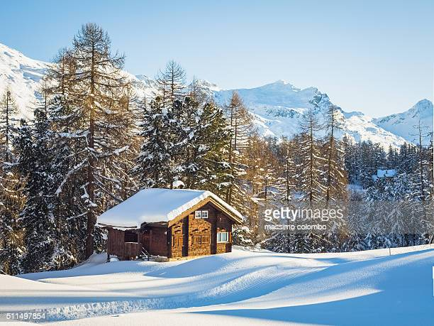 cabin retreat - brief - hut stock pictures, royalty-free photos & images