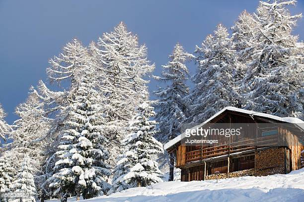 Cabin with stacked wood and snow covered trees