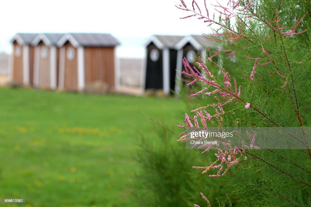 Cabins in front of the Atlantic Ocean : Stock-Foto