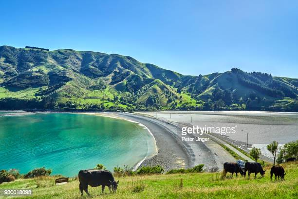 Cable bay causeway, Nelson, New Zealand