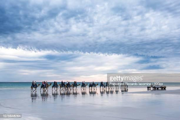 cable beach, australia - francesco riccardo iacomino australia foto e immagini stock