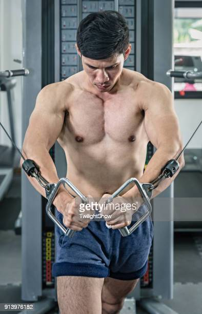 cable crossover workout - asian six pack stock photos and pictures
