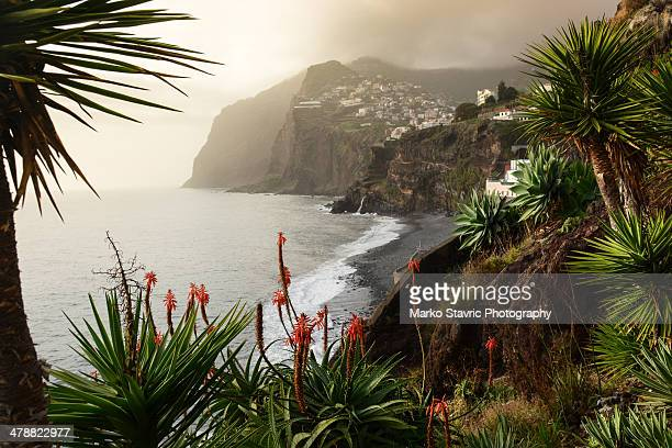 cabo girao - lareira stock pictures, royalty-free photos & images