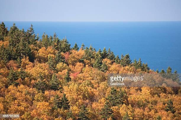 cabot trail, cape breton island - ニューヘイブン ストックフォトと画像