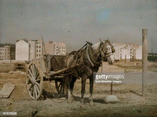 Cabs-coach for the transport of waste. Vienna. Autochrome Lumière. Photograph probably by Franz Kaiser around 1908 Eine Cabs-Kutsche in Wien. Mit...