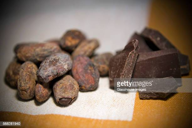 Cacao Beans with Chocolate Pieces