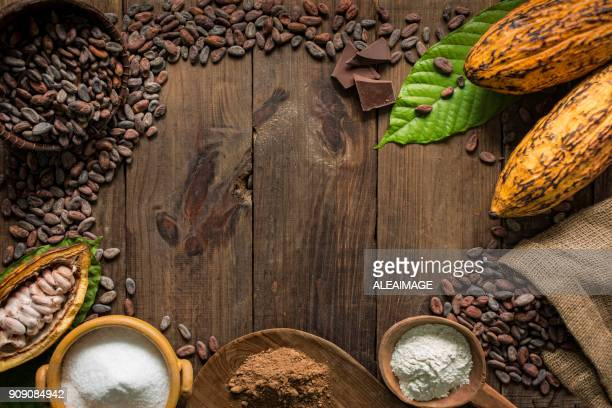 cacao composition with copy space - theobroma imagens e fotografias de stock