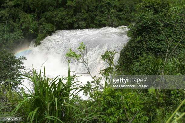 Cachoeira das Andorinhas - Monte Alegre do Sul