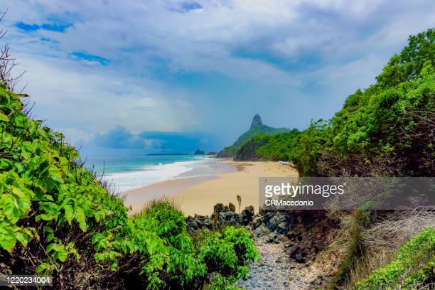 cacimba beach, one of the longest beaches in fernando de noronha, is a must go in the island, especially for surfers. - crmacedonio stock pictures, royalty-free photos & images
