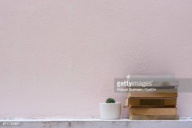 Cactus And Books Against Wall