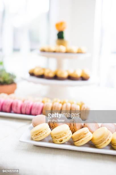 Cactus and Succulent Baby Shower Macarons