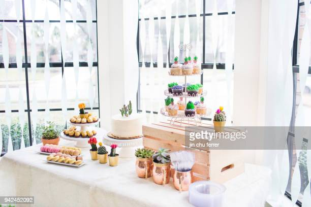 Cactus and Succulent Baby Shower Table
