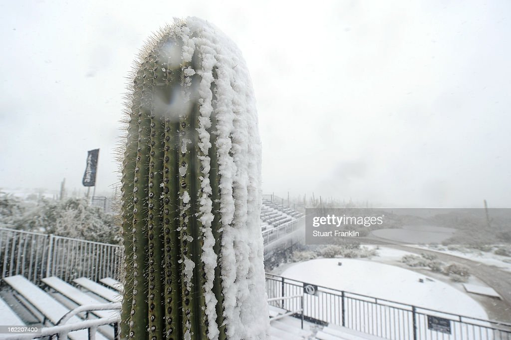 A cactus is seen in the foreground as snow covers the first hole tee as play was suspended due to weather during the first round of the World Golf Championships - Accenture Match Play at the Golf Club at Dove Mountain on February 20, 2013 in Marana, Arizona.