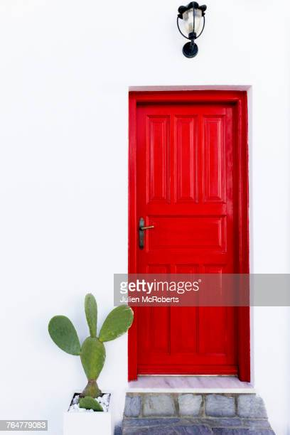 cactus near red door - front door stock pictures, royalty-free photos & images
