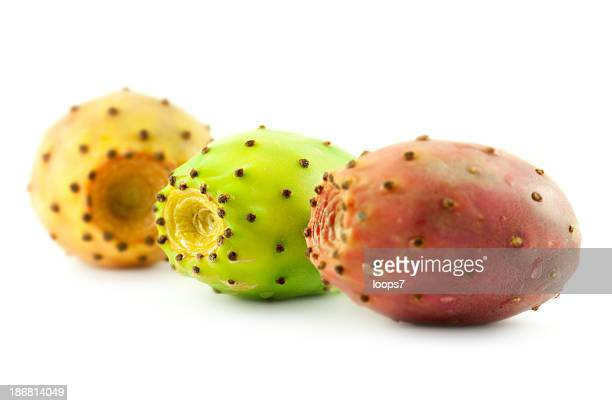 cactus pears - prickly pear cactus stock photos and pictures