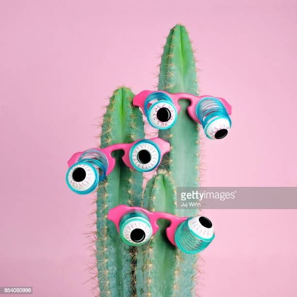 Cactus Wearing Eyeball Glasses