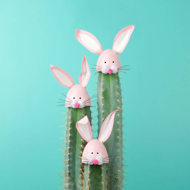 Cactus with Easter Rabbit decorations